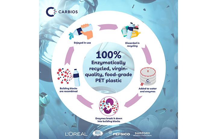 Carbios-Enzyme-Explainer-Infographic-Art.jpg