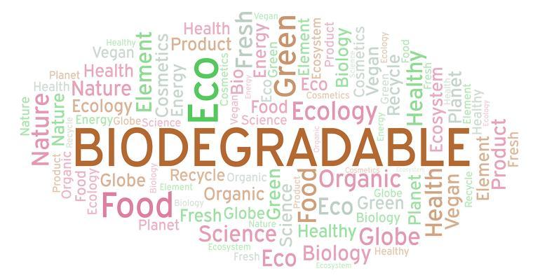 Biodegradable word cloud sharafmaksumov AdobeStock