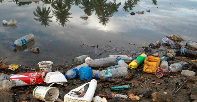 UN says biodegradable plastics are not the solution to marine litter