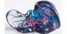 paloian-part-2Clear-Multicolored-polyjet-1540x800_0